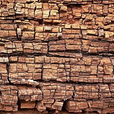 Residuos de industria de transformacón de la madera